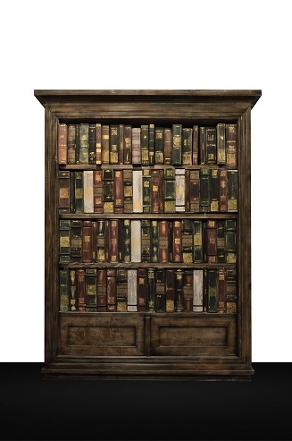 <p>A bookcase with a ghost<br></p>