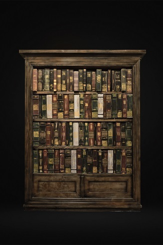 "<span style=""font-weight: bold;"">A bookcase with a ghost</span><br>"